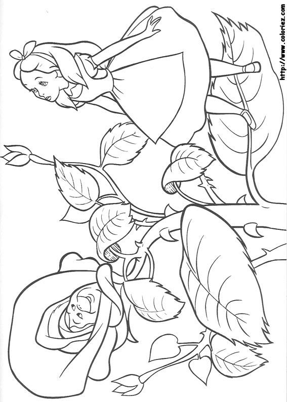Coloriage coloriage d 39 alice et la fleur - Coloriage alice ...