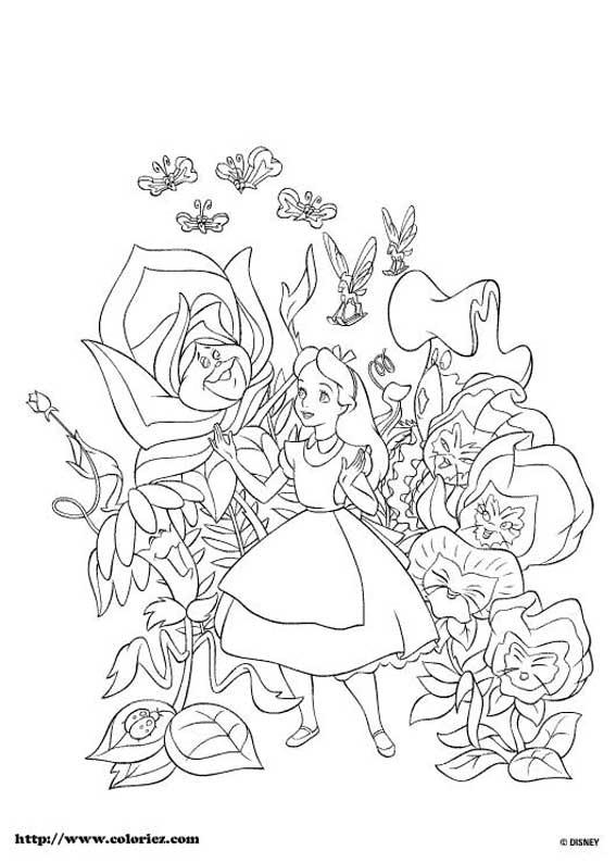 Les Coloriages D Alice Au Pays Des Merveilles