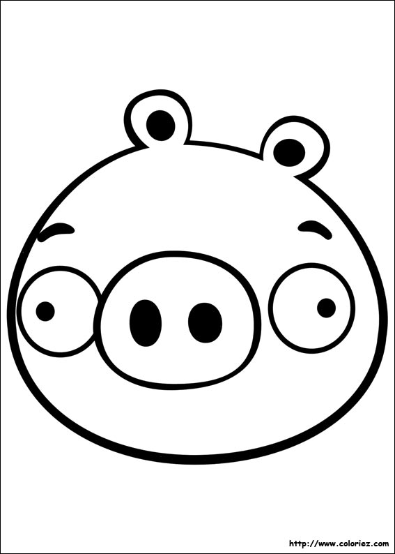 Coloriage petit cochon tout rond - Coloriage angry birds ...