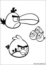 Petits et grands angry birds