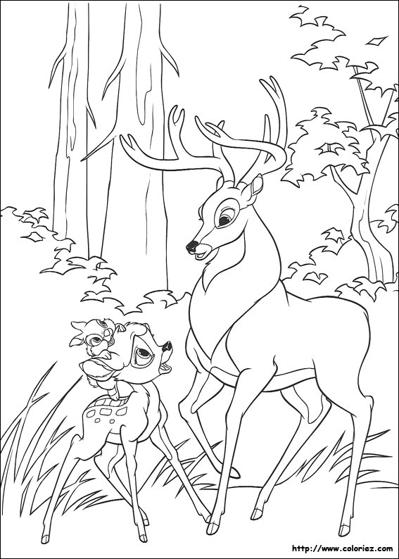 Index Of Images Coloriage Bambi 2
