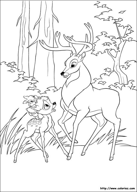 Coloriage coloriage de bambi et le grand prince - Coloriage grand ...