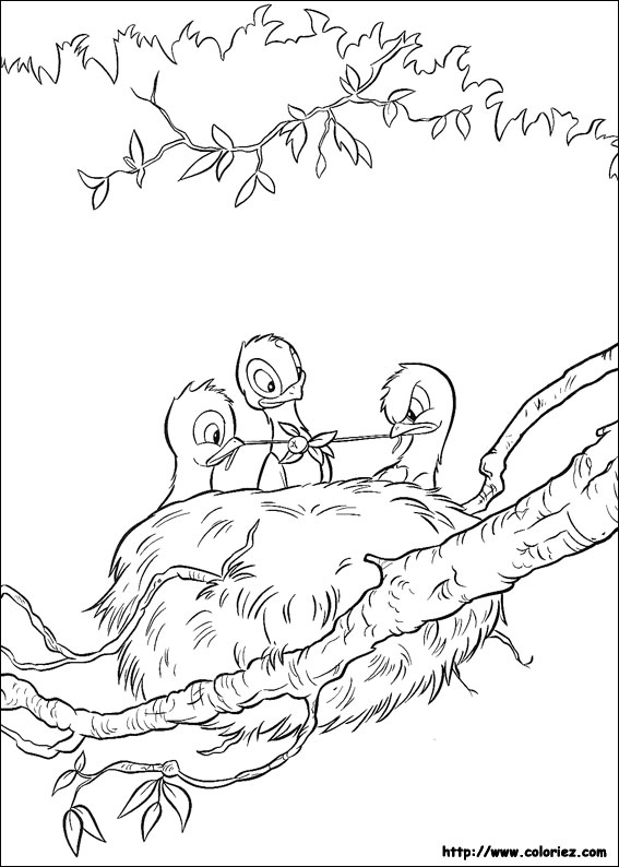 baby birds in a nest coloring pages - photo #11