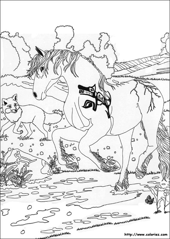 coloring pages of a rock 1 as well RidRgq6nT also town coloring page adults moreover unicorn and a fairy also Animais para colorir desenhos atividades imprimir  15 also free coloring pages of skull and bandana likewise  further cute shetland pony coloring page moreover cowboy and horse b2710 furthermore Horse Cowboy cow further . on bull riding coloring pages for adults