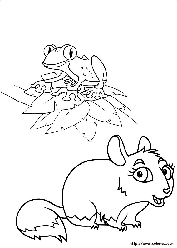 Pin jojo circus coloring pages for kids free online for Chinchilla coloring pages to print
