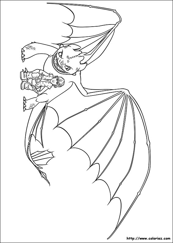 Coloriage coloriage d 39 harold et furie nocturne - Furie nocturne dragon ...
