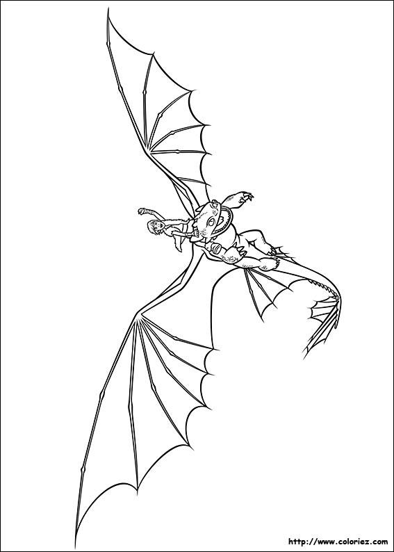 Coloriage Coloriage D 39 Harold Le Dresseur De Dragon
