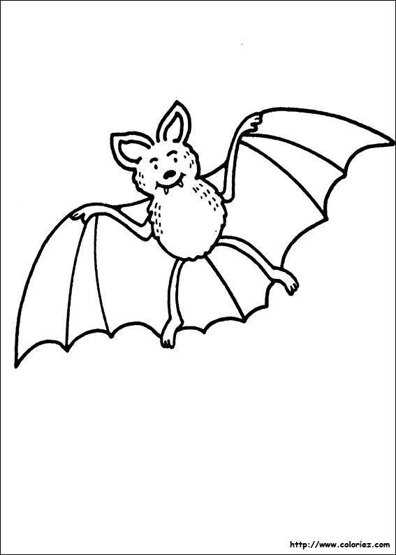 Coloriage la chauve souris d 39 halloween - Dessin halloween chauve souris ...