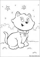 Un chat sous les étoiles