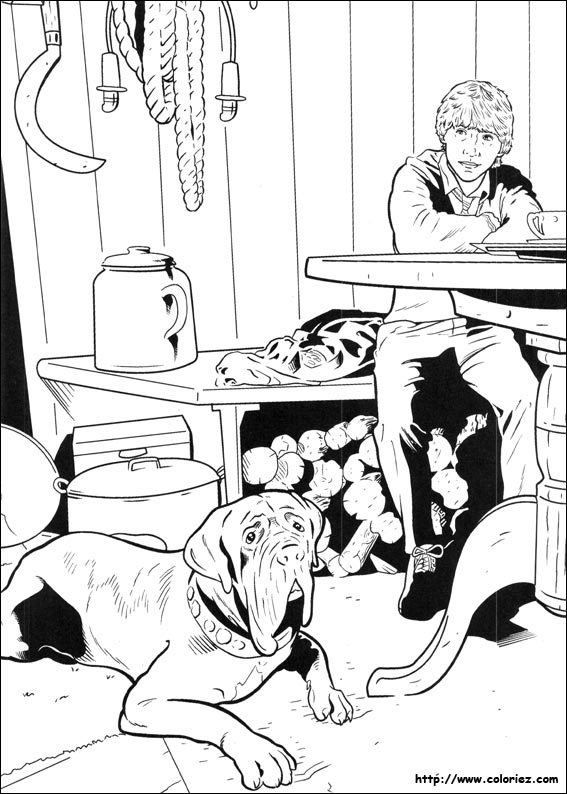 Coloriage Harry Potter 78gif 6518 Coloring Page Harry Potter And