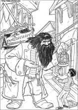 Coloriage Harry et Hagrid