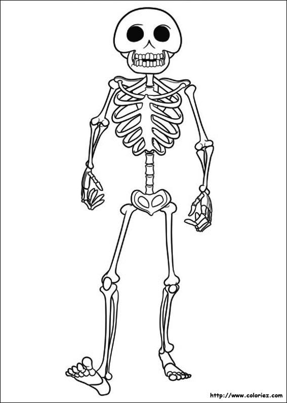 Coloriage squelette - Dessiner un squelette ...