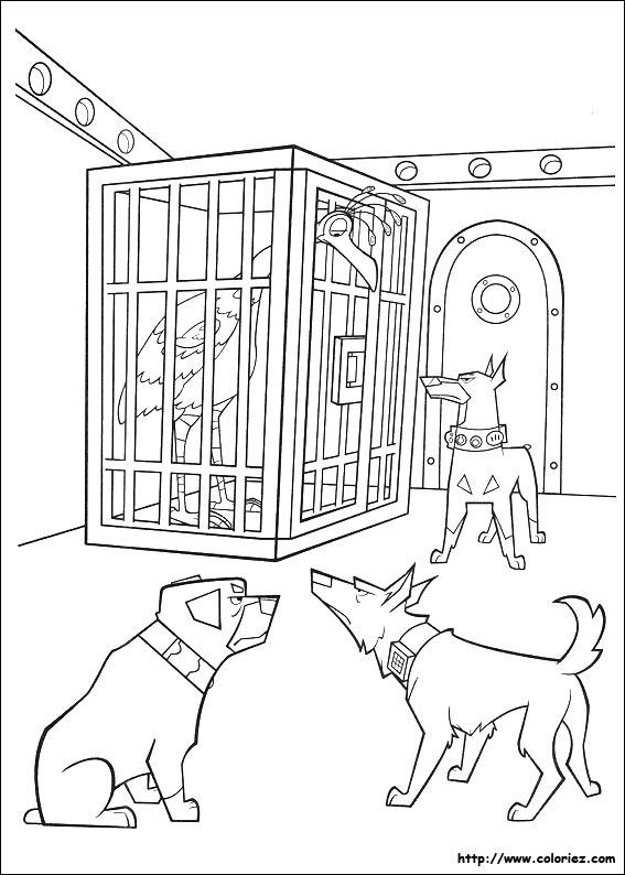 Coloriage kevin en cage - Dessin oiseau en cage ...