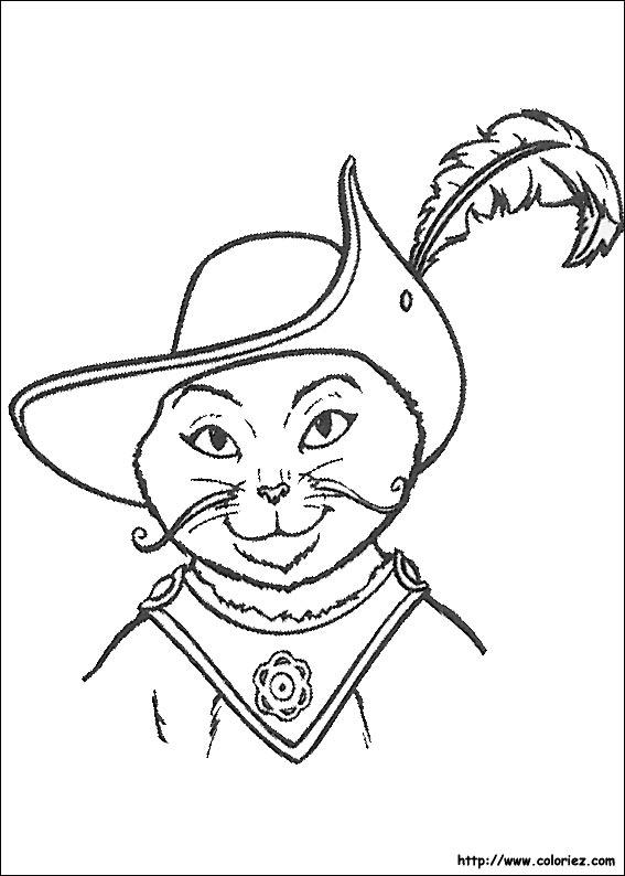 Coloriage portrait du chat pott - Jeux de coloriage de chat ...