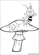 Willy et le champignon