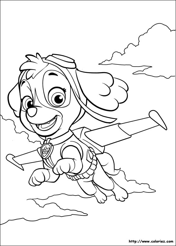 Skye Paw Patrol Coloring Pages : Paw patrol skye coloring sheets pages