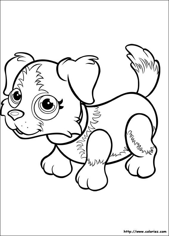 Coloriage bouvier bernois - Coloriage pet ...