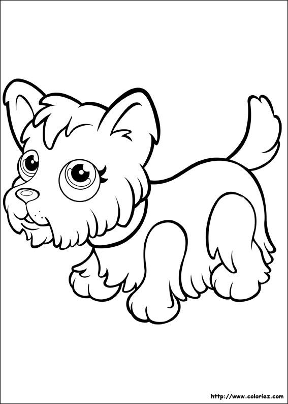 Coloriage yorkshire - Coloriage pet ...
