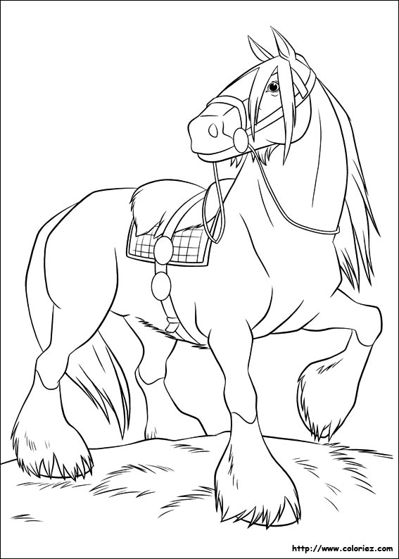 Coloriage angus - Rebelle coloriage ...
