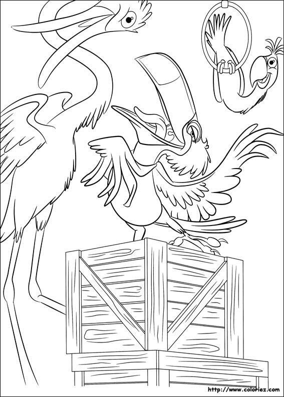 Coloriage coloriage de rafael le toucan - Coloriage toucan a imprimer ...