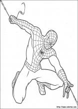 Coloriage spiderman choisis tes coloriages spiderman sur - Dessin spiderman facile ...