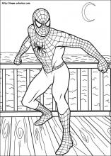 coloriage spiderman choisis tes coloriages spiderman sur coloriez com