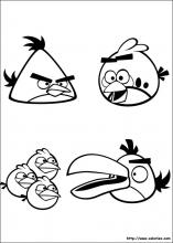 Les angry birds