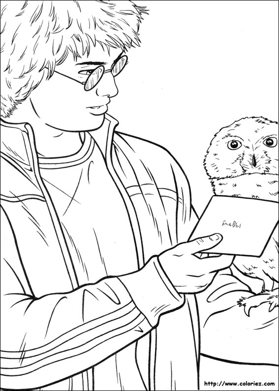 COLORIAGE - Coloriage d'Hedwig