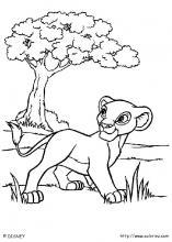 Les Coloriages Du Roi Lion