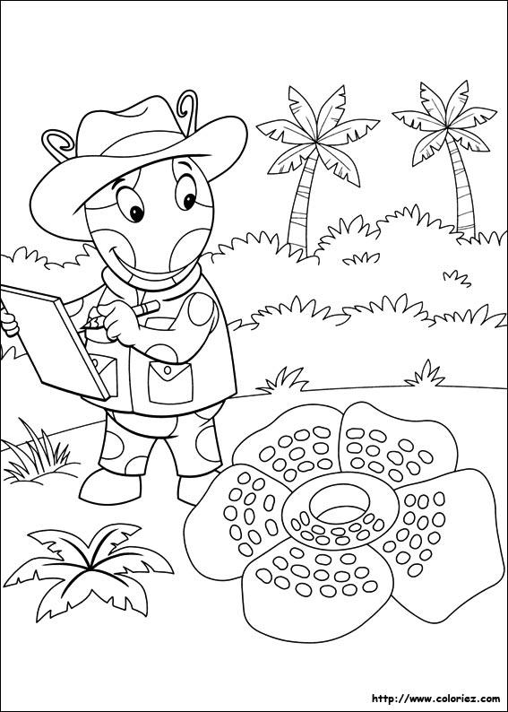 Coloriage La Foret Tropicale.Coloriage Les Melodious Explorent La Foret Tropicale