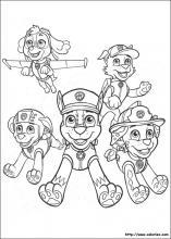 Coloriage Garcon Pat Patrouille.Coloriage Paw Patrol Choisis Tes Coloriages Paw Patrol Sur