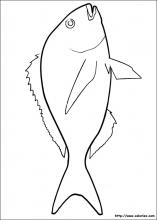 Coloriage Poisson Davril A Colorier.Coloriage Poisson D Avril Choisis Tes Coloriages Poisson D Avril
