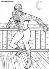 Coloriage Spiderman Choisis Tes Coloriages Spiderman Sur Coloriez