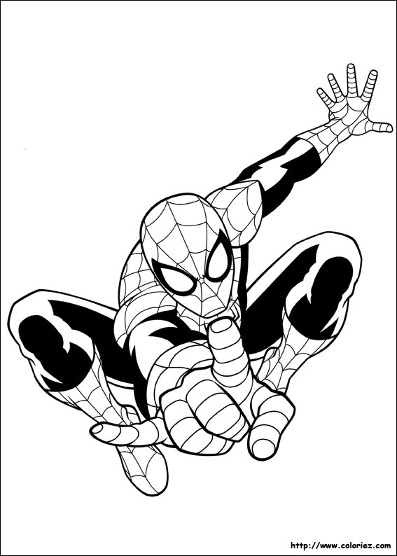Index Of Images Coloriage Ultimate Spider Man